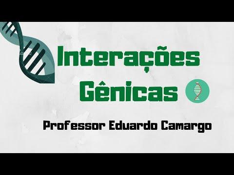 Interações Gênicas - AULA 03 from YouTube · Duration:  12 minutes 32 seconds