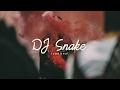 DJ Snake Type Beat - Fantasy [Tropical House Instrumental]