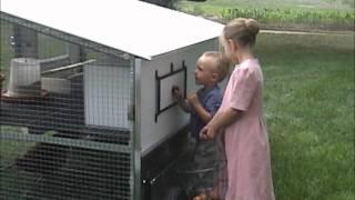 The Egg Cart