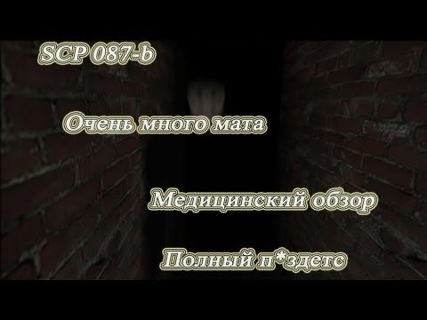 SCP 087-b. Медицинский обзор