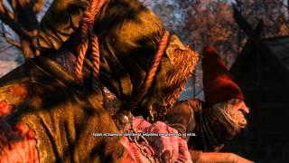 The Witcher 3: Wild Hunt (Хозяйки лесов, бабушки извращенки)