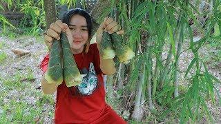 Yummy Bamboo Shoot Cooking Shrimp - Bamboo Shoot Digging From Bamboo Shrub - Cooking With Sros