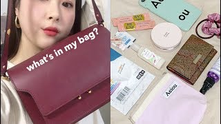 (Eng)왓츠인마이백?데일리 가방, 지갑, 쿨톤 파우치…