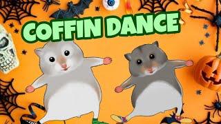 Coffin Dance - Dedoles Cover Song C...