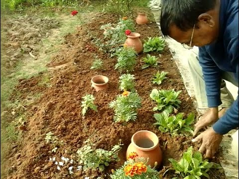 Water saving techniques for gardening