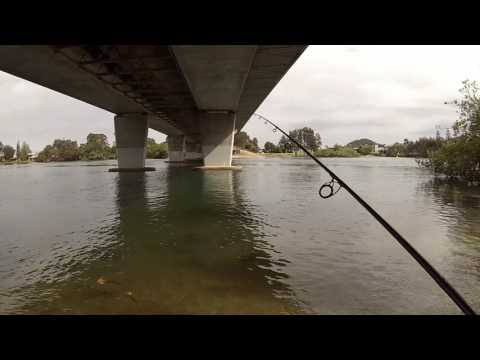 How To Catch Bream On Bait Around A Bridge ( Basic Bream Fishing )