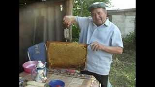 Цветочный майский мед(Цветочный майский мед., 2012-05-31T14:45:05.000Z)