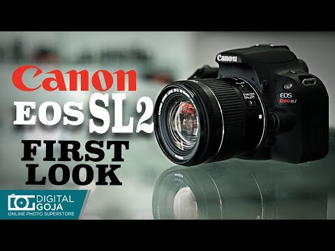 CANON EOS Rebel SL2 First Look Review