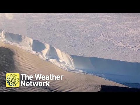 Antarctic ice shelf 'sings', scientists captured something VERY strange