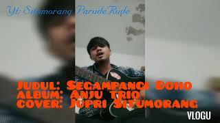 Anju trio Segampang doho || Cover Jupri Situmorang