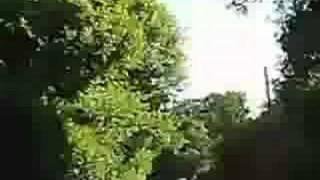 Anecdotes Video