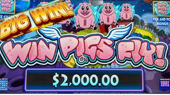 FIRST LOOK🤔 ⭐WIN PIGS FLY❗⭐ LIVE PLAY 3X BONUSES