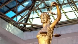 Профессиональная оценка судей. Кем и как она проводится?