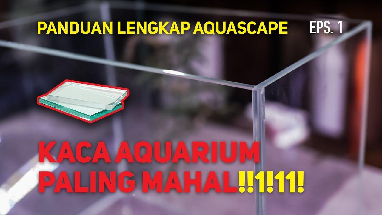 Tips Memilih Aquarium Yang Sesuai Episode 1 Youtube