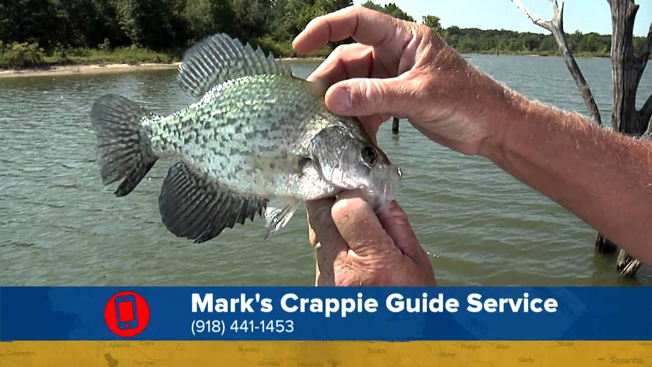 how to crappie fish Crappie fishing gear product - shakespeare ugly stik crappie spinning reel and fishing rod combo (products not sold by walmartcom).