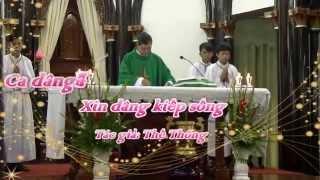 XIN DÂNG KIẾP SỐNG - THẾ THÔNG - CĐ  THÁNH TÂM, KON TUM