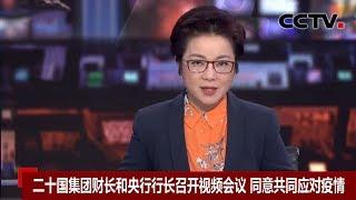 [中国新闻] 二十国集团财长和央行行长召开视频会议 同意共同应对疫情 | 新冠肺炎疫情报道