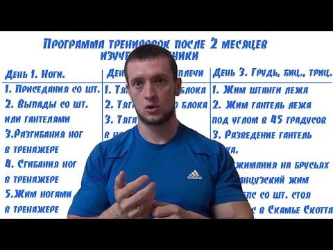 Как правильно выстроить тренировку