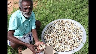 500 Quail eggs Prepared by my Daddy ARUMUGAM / Village food factory