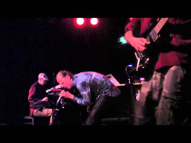 Insane Live@Sargfabrik Vienna/2014