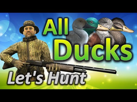 Let's Hunt ALL DUCKS - TheHunter Classic