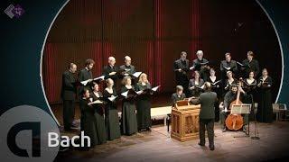 J.S. Bach: Motet BWV 225