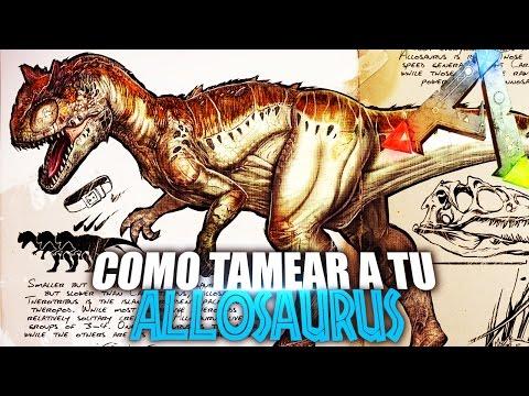 COMO TAMEAR A TU ALLOSAURUS| | Guia Español | Ark: Survival Evolved