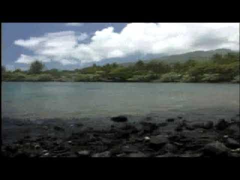 ANCIENT HAWAIIAN FISHPONDS