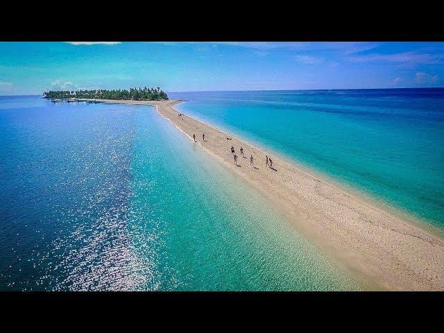 好倫  ▶平淡的日子需要旋律、無聊的生活必須旅行|菲律賓最美島嶼Kalanggaman & Oslob Cebu