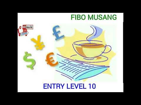 fibo-musang-:-level-entry-10