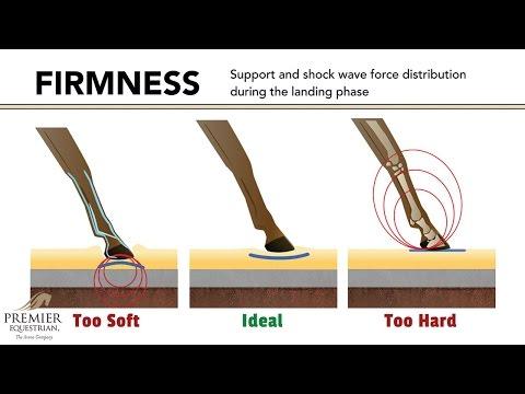 How Arena Surfaces Affect Horse Biomechanics