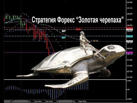 """Стратегия Форекс """"Золотая черепаха"""""""