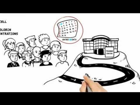 Whiteboard Animation Companies