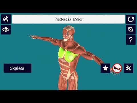 3d Anatomy Full Version Apps On Google Play