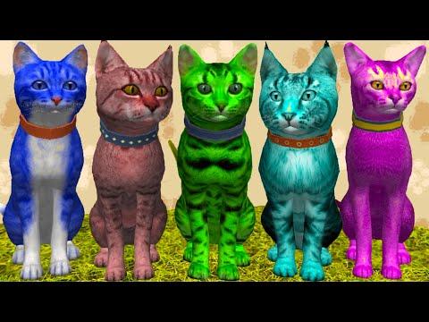 Симулятор КОТА и КОШКИ #16 Синий, розовый и зеленый котенок Разноцветные коты Кида на пурумчата
