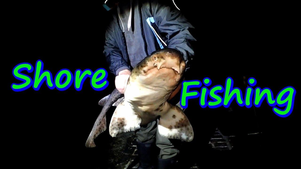 Shore Fishing - Bull Huss Shark & Lost Tackle