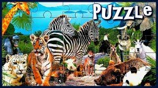 Пазлы для Маленьких - Животные для Детей | Развивающие Игры для Детей