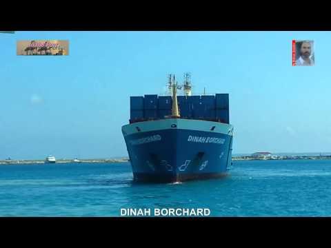 DINAH BORCHARD- CONTAINER SHIP