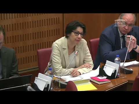 Auditions commission d'enquête 17 mai