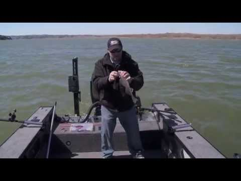 Fish Ed 040 - Missouri River Early Spring Walleye