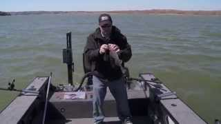 Fish Ed ep40 - Missouri River Early Spring Walleye
