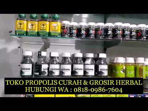 distributor-goodfit-nano-propolis-wa-081809867604