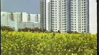 Жилой район Ясенево (начало 1980-х)