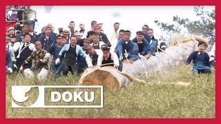 Lebensgefährliches Ritual: Das heilige Baumstammfest |  Doku