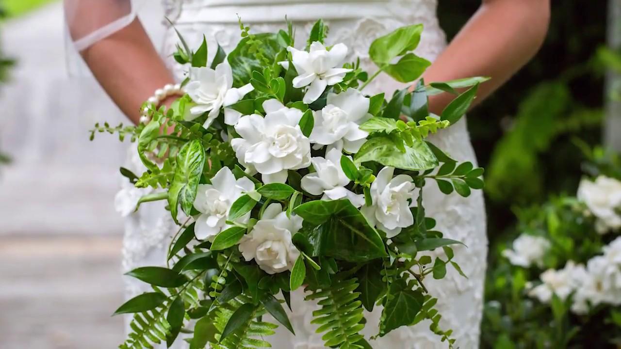 Jubilation Gardenia With Linda Vater