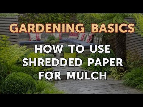How to Use Shredded Paper for Mulch
