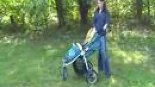 Baby Gizmo Bumbleride Indie Stroller Review