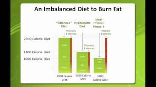 Ideal Protein Diet