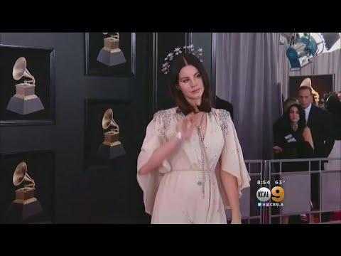 Police: Florida Man Threatened To Kidnap Singer Lana Del Rey