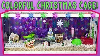 Pudding & Dumpling's COLORFUL CHRISTMAS CAGE! Thumbnail